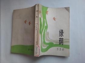 绿荫 【反映部队生活的中篇,写的是三个女青年不同的追求,塑造几个当代军人的不同形象】