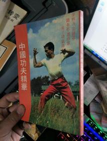 中国功夫精华