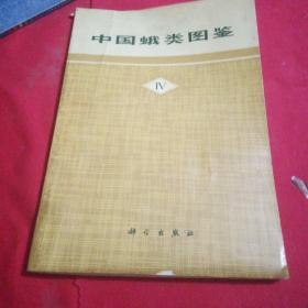 中国蛾类图鉴IV