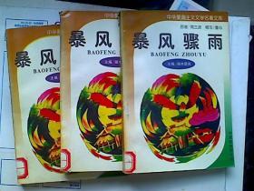 中华爱国主义文学名著文库-暴风骤雨