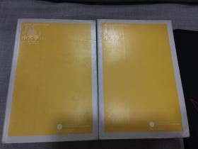小大亨(凤凰文库.外国现代当文学系列)全两册