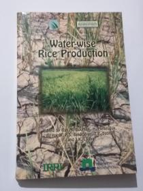 water-wise rice production