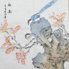 【保真】。【许鲁】山东省美协会员、中国书画艺术研究会会员、小斗方作品(43*43CM)(秋韵)