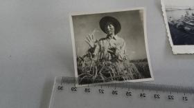 1965铜陵一号选育者胡光才说