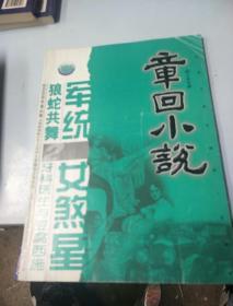章回小说。2008            2