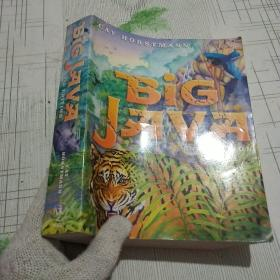 Big Java, 2Nd Edition 大JAVA,第二版