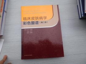 临床皮肤病学彩色图谱(第2版)(封面和书脊或前几页有撕裂痕迹已粘好,不影响正常阅读,正版原版书内页无笔记无破损。详见书影)