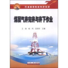 煤层气井完井与井下作业 正版 王丽,杨伟,田润年  9787502198985