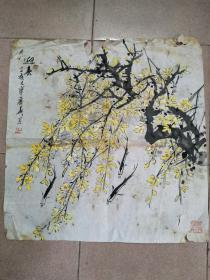 杨丽华――绘画