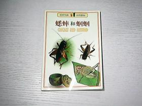 客厅文库-蟋蟀和蝈蝈