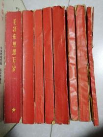 《毛泽东思想胜利万岁》全八册