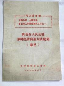 山西省忻县各人民公社多种经营典型大队规划(意见)1976年【复印件.不退货】