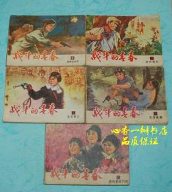 战斗的青春(全5册)