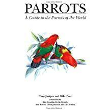 Parrots: A Guide to Parrots of the World