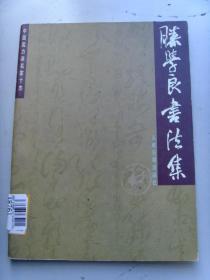 滕学良:《滕学良书法集》中国实力派名家十杰