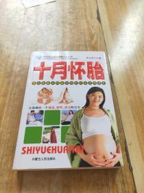 现代时尚休闲保健生活丛书十月怀胎