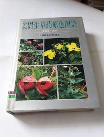 中国民间生草药原色图谱