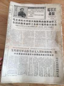 哈尔滨战报(360期-918期)不全有缺期 见详细描述
