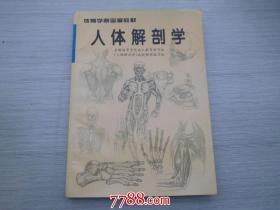 体育学院函授教材 人体解剖学