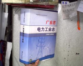 廣東省電力工業志:1991~2002