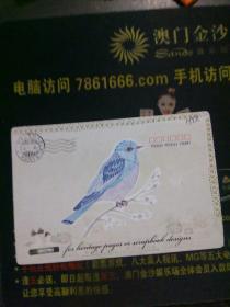 明信片:鸟