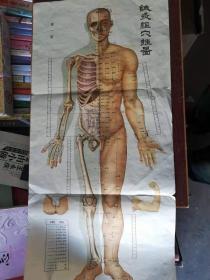【六十年代;针灸经穴卦图 第一图