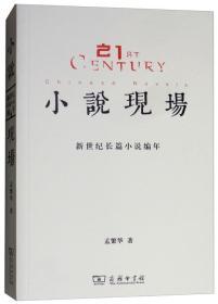 小说现场:新世纪长篇小说编年