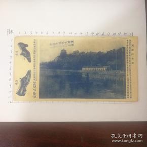 清代民国时期广告纸一页有广告有万寿山全景图还有字帖?真实惠