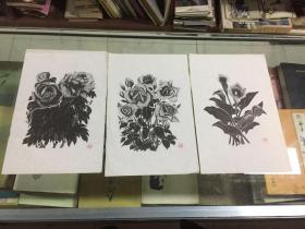 60年代朵云轩 刘岘木刻花卉版画3张