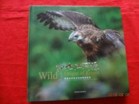 野性江河源--青藏高原野生动物摄影集萃