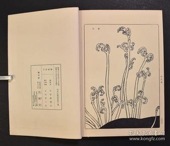 艺草堂本《内外文样类集》10册全,日本织物陶瓷器染织铜器等文样、模样名称、事物、调度品名等约1760图1000页花纹图案图版,六十年代版。孔网最低价。