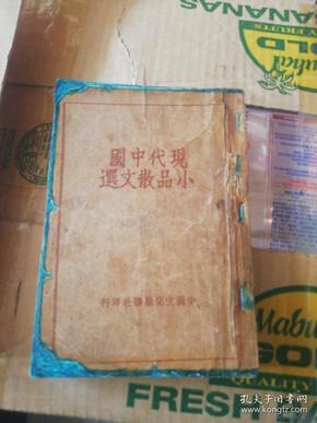 现代中国小品散文选