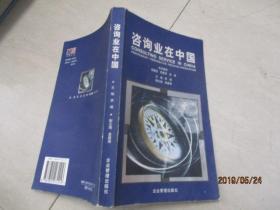 咨询业在中国   26-3