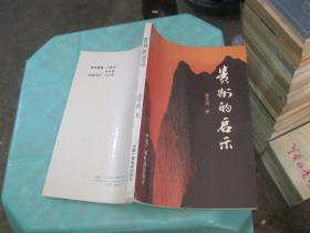 贵州的启示   货号26-3