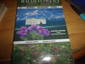 WILDFLOWERS--外文原版---公园野花