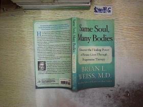 Same Soul, Many Bodies:Discover the Healing Power of Future Lives through Progression Therapy