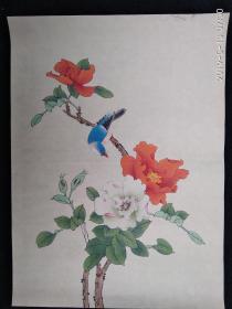 精彩花鸟国画 工笔画(反面有背胶)