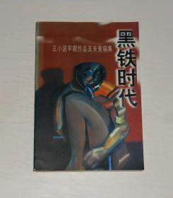黑铁时代(王小波早期作品及未竟稿集) 1998年1版1印