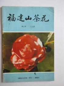 福建山茶花