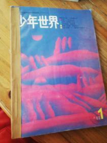 少年世界1992年1-6期