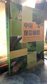 中国观赏蝴蝶