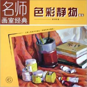 名师画室经典:色彩静物(默写)(6)