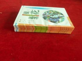 镜花缘全6册-学生版中国古典文学名著