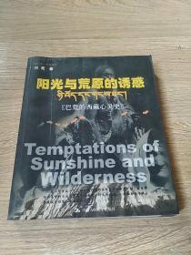 阳光与荒原的诱惑:巴荒的西藏心灵史