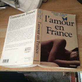 I amour en  France丹尼尔爱情 在弗兰