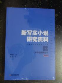 当代中国文学史丛书:新写实小说研究资料【未开封】
