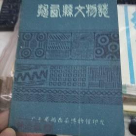 揭西县文物志