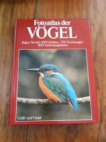 FOTOATLAS DER VÖGEL   DAS GROBE BILDSACHBUCH DER VÖGEL EUROPAS (800NATURFARBFOTOS UND ZEICHNUNGEN,400VERBREITUNGSKARTEN)鸟类的照片 欧洲鸟类的重要图片(德文原版精装大16开本)