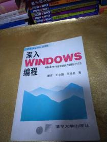 深入Windows编程:Windows加密及压缩软件编程技巧与方法