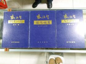 张清智山水画集、花鸟画集、山水画集(全三册)99年初版   印量2000套  8开精装本